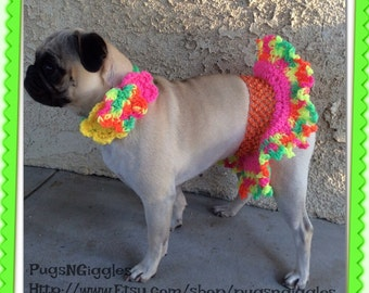 Neon colors miniskirt-dresses for dogs-skirts for dogs-pugs-clothing for dogs-summer-collars for dogs-pugs in skirts-cute pugs