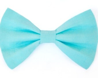 Aqua dog bow tie & cat bow tie, blue