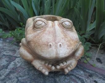 Lazy Frog Planter