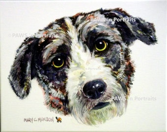 """PAWS'nPortraits - """"LINDY""""~ Bearded Collie mix, original painting, 8"""" x 10"""" x .75"""", FREE Shipping"""