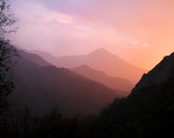 Sunset Through The Fog.  Sequoia National Park, California