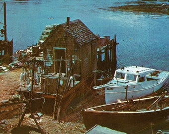 1960s Unused Postcard Featuring a Typical Maine Fishing Shack