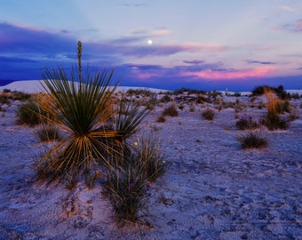 White Sands New Mexico National Monument Full Moon Landscape Photography Desert Landscape print