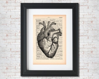 Heart Vintage Anatomy Illustration Dictionary art print - Upcycled dictionary art - Book print page art #029