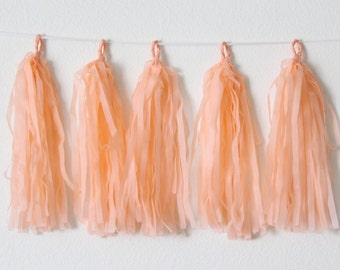 Tissue Paper Tassel Garland DIY KIT-Peach Party Decor-Country Fair Decorations-Peach Wedding Tassels-Tea party Garland-Peach Balloon Tassel