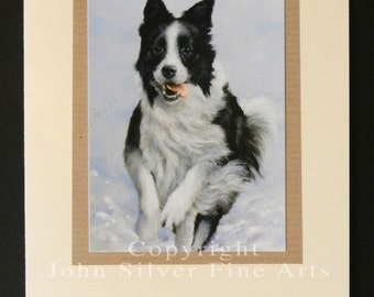 Border Collie Dog Portrait Hand Made Greetings Card. From Original Paintings by JOHN SILVER. GCBC004