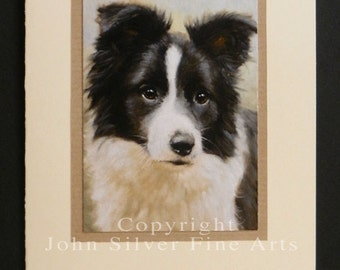 Border Collie Dog Portrait Hand Made Greetings Card. From Original Paintings by JOHN SILVER. GCBC012
