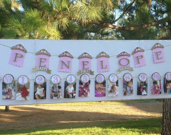 First birthday banner and  photo clip banner