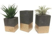 "Square Concrete Planters / Vase. (set of 3). CHARCOAL & GOLD.  Enter Promo code ""LOVE1"" to recieve 10% off entire order."