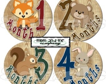 Baby Month Sticker Woodland Monthly Stickers Baby Stickers Baby Milestone Sticker Photo Prop Baby Shower 12 Month Stickers Baby Boy
