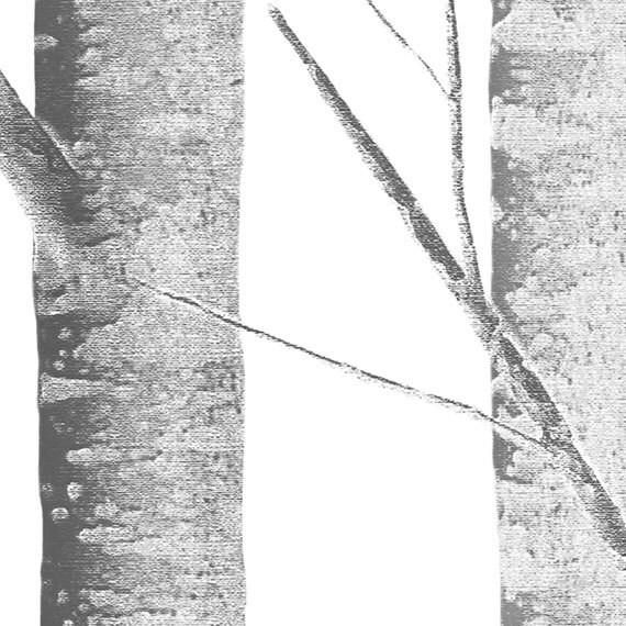 peel and stick wallpaper birch tree peel and stick fabric wallpaper