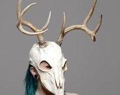 Deer skull mask sz sm/m