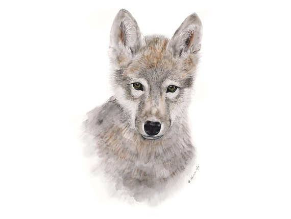 Wolf Art Baby Wolf Wolf Painting Wolf Pup Wolf By