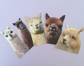 Llama Alpaca Sticker Set