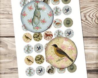 Wild life digital collage sheet, printable download, animal illustration, rabbit, bird, tiger, fox, glass dome, bottle cap