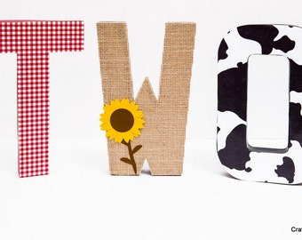 Barnyard party centerpiece, Cowgirl Party Decoration, Farm theme party, Cowgirl birthday, barnyard party, Western Party