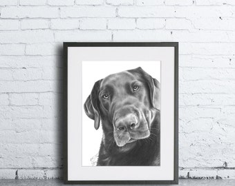 Pet Portrait 8 x 10 Inch