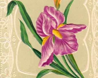 Vintage French flowers postcard . Embossed post card .