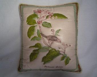 Vintage Chintz Bachman's Sparrow Pillow