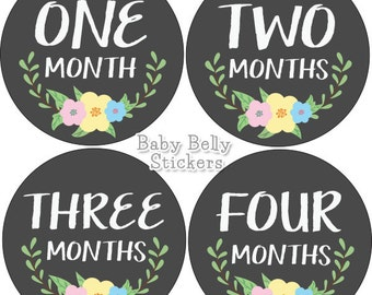Baby Month Stickers, Monthly Baby Stickers, Monthly Milestone Stickers, Baby Monthly Stickers, Baby Belly Stickers, Floral