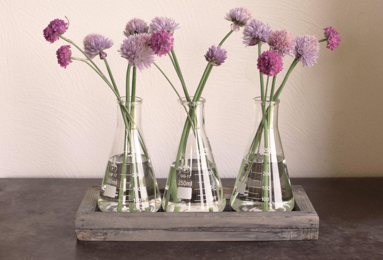 Rustic laboratory bud vase vase test tube bud vase for Test tube vase