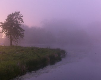Fog Over Lincoln Park Pond at Twilight
