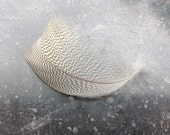 """Beige Patern Feathers - Feathers for Crafs  Beige Bridal Feathers - Egytian goose feathers - 5""""inches Feather- 1510"""