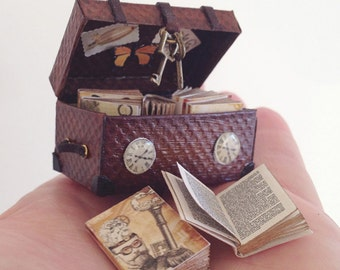 Time Travellers Trunk with 8 Books (all books printed with double sided pages)