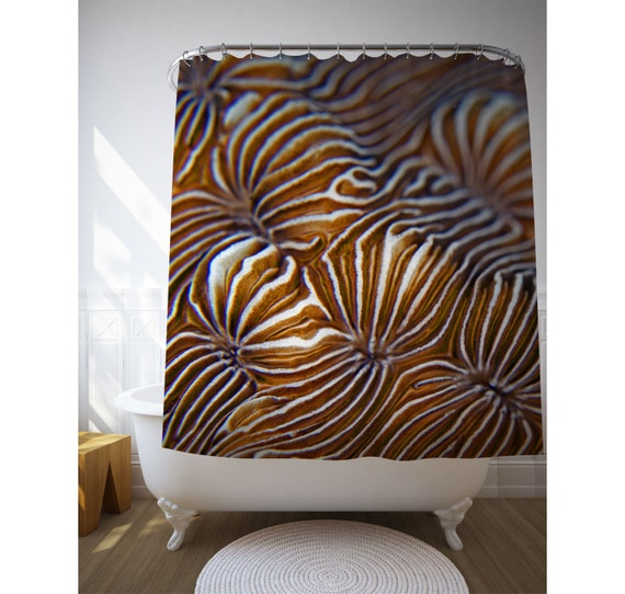Items Similar To Reef Coral Shower Curtain Reef Art Photo Nature Decor Bro
