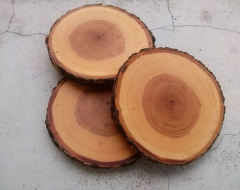 Wood circle 3 pcs, Elm wooden coaster, Round wooden circle, Tree slice, Unfinished wood circle, Elm wooden, Rustic table decor,Country style