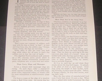 1943 Your Dog Joins Up: The Importance of Dogs in the Military, Vintage WWII Magazine Article, 24 B&W Photos