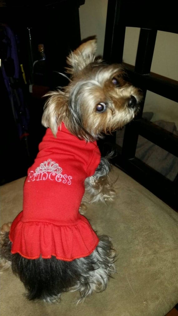 Items similar to custom embroidered dog t shirts on etsy for Custom pet t shirts