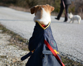 Dog raincoat, handmade,eco-textiles, repelant to water and dirt, self-cleaning Do not collect hair.  LARGE SIZE