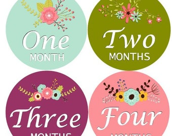 Floral Girl Monthly Baby Stickers Flower Girl Month Stickers
