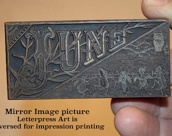 Letterpress artwork. .917 high printing block. Engraved June with dancing bugs.