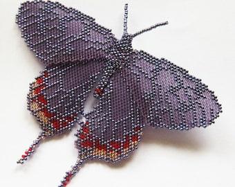 MOTH - beadwoven purple violet peyote brooch with toho seeds; unique handmade, original, handmade jewelry, handmade gift, butterfly brooch
