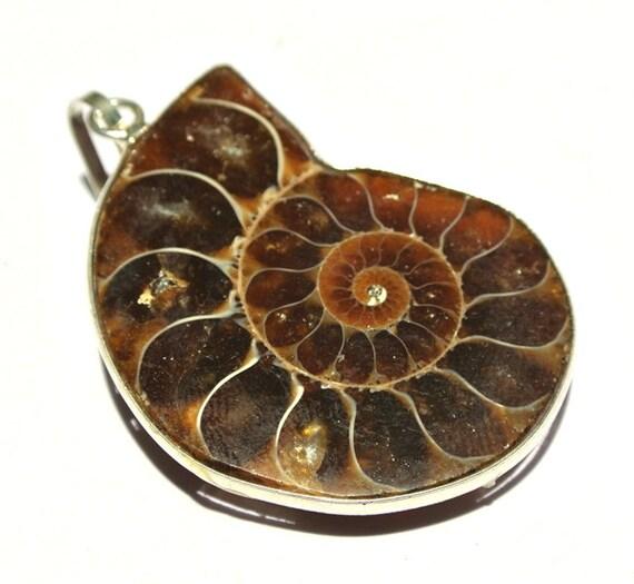 ammonite fossil pendant ammonite bezel set focal pendant