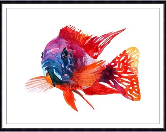 Red Cichlid Fish Art Print,ORIGINAL Watercolor Fish Painting,Home decor 031