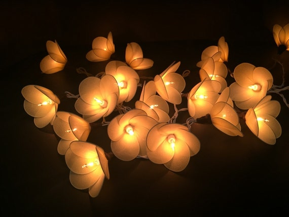 20 Cute Yellow Flower Fairy String Lights by FloraBlossanova