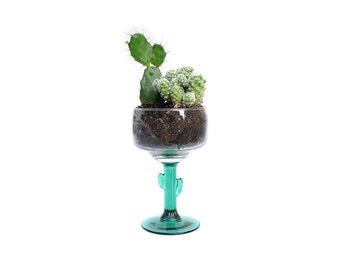 Cactus margarita glass | Cacti and succulent planter | 3 available