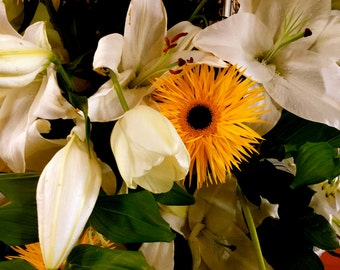 English Flowers, Botanical, Photo Art Cards, Nature Photography, Greeting Card, Poster, Carte Blanche Images