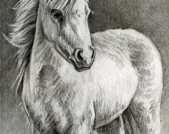 """Equine Art. An original equine graphite pencil drawing of a miniature horse, entitled """"Windblown"""""""