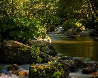 Covered bridge over Creek