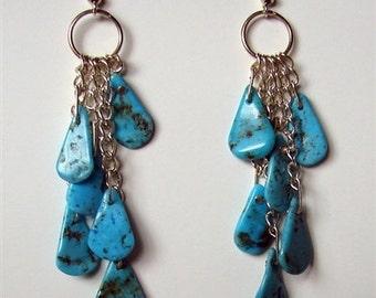 Arizona Rain Earrings
