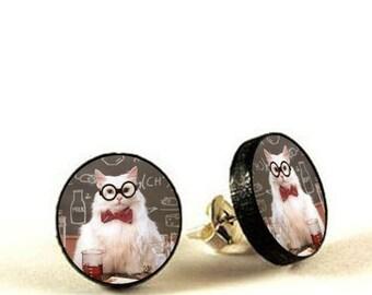 Chemistry Cat Meme Post Earrings - decoupage stud earrings