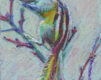 "Original Pastel drawing ""Chipmunk"""