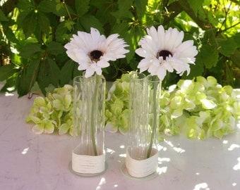 Decorative Test Tube Vase