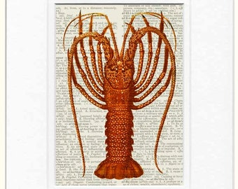 red lobster dictionary page print