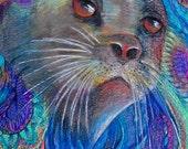 original art color pencil  drawing 11x14 seal sea lion zentangle design abstract