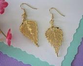 Gold Leaf Earrings, Birch Leaf, Real Leaf Earrings , 24kt Gold, Nature, Nature, Oragnic Earrings, LESM100